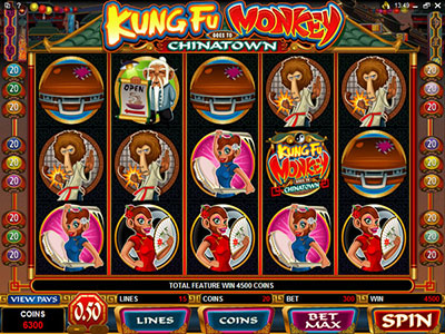 Kung Fu Monkey Martial Arts Microgaming Online Pokie