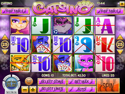 Cats And Mice Gamble In Online Pokies