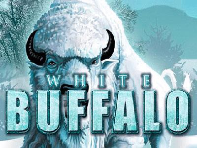 American Buffalo In Australian Online Pokies
