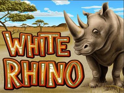White Rhino Pokie at Australian Sites