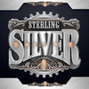 Sterling Silver 3D icon