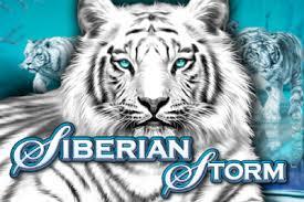 Siberian Storm icon